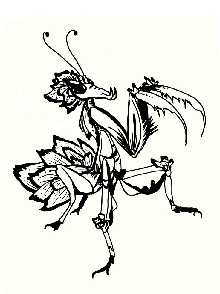 Fantasy orchid mantis